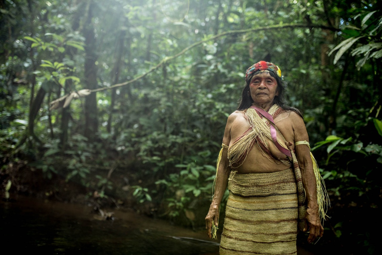 Protect the Amazon from Oil Drilling